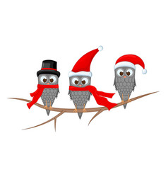 three owls on the branch in the santa claus hat vector image