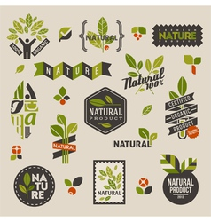 Nature labels and emblems with green leaves vector
