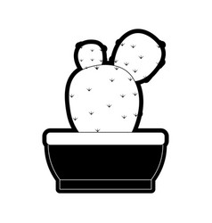 Cactus in potted vector