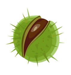 Chestnut iconcartoon icon isolated vector