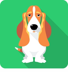dog Basset Hound sitting icon flat design vector image