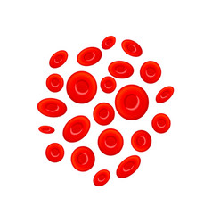 group different erythrocytes red blood cells vector image
