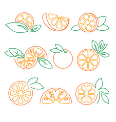 orange logos set vector image