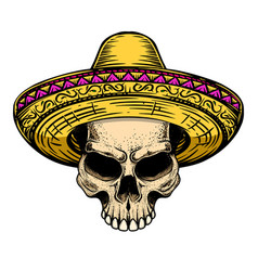 skull in sombrero isolated on white background vector image
