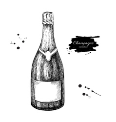 Champagne bottle Hand drawn isolated vector image vector image