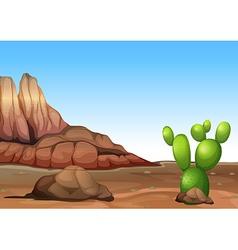 A desert with a cactus vector
