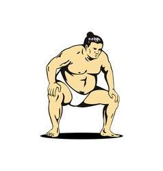 Japanese Sumo Wrestler vector