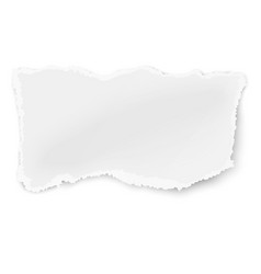 Rectangular ragged piece of paper vector