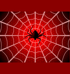 Spider web cobweb trap gossamer halloween vector