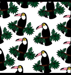 tropical bird toucan exotic seamless pattern vector image