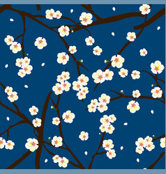 White plum blossom flower on indigo blue vector