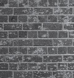 grunge brick wall 2505 vector image