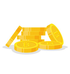 digital bitcoins flat style isolated on white vector image vector image