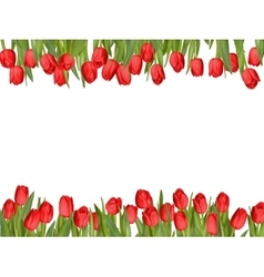 Isolated tulip frame arrangement EPS 10 vector image vector image