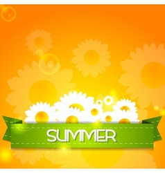 Summer design Camomiles and ribbon vector image vector image