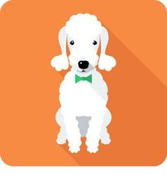 dog Bedlington Terrier sits icon flat design vector image