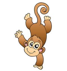 Funny cute monkey vector