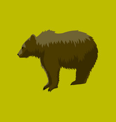 in flat style bear vector image