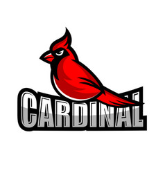 modern cardinal bird logo vector image