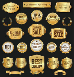 retro vintage golden badges and labels vector image
