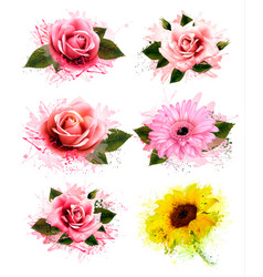 Set of greeting cards with defferent flowers vector
