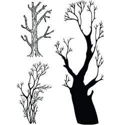 Trees without leaves vector