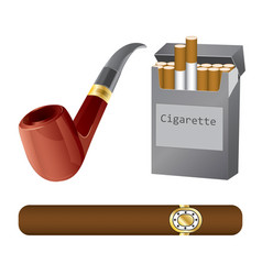 set of a pipe cigar and cigarette vector image vector image
