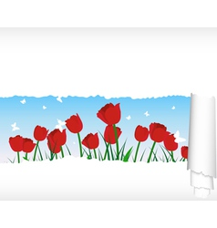 Tulips Meadow Banner vector image