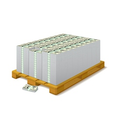 Pack of banknotes on a wooden pallet vector image vector image