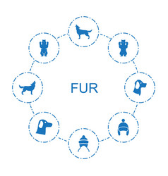 8 fur icons vector image