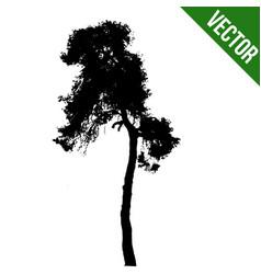 beautiful tree silhouette icon vector image