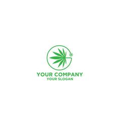 Doctor cannabies logo design vector