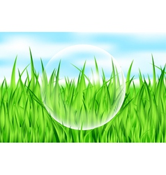 drop on grass vector image