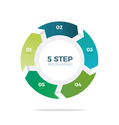 five step circle infographic vector image