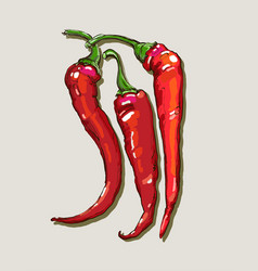 Hand drawing red hot peppers vector