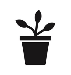 potted plant icon vector image