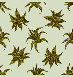 Seamless pattern with hand drawn colored aloe vector