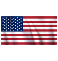 waiving us flag vector image