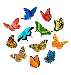 Flying butterflies vector