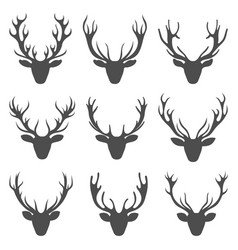 set deer heads collection stag horns isolated on vector image