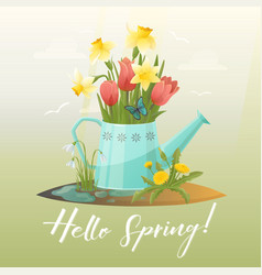 Watering can and tulip snowdrop narcissus flower vector
