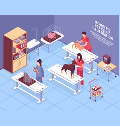 isometric veterinary composition vector image vector image