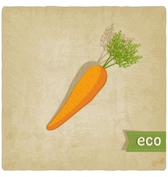 carrot eco background vector image
