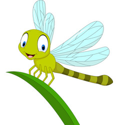Cartoon funny dragonfly on leaf vector
