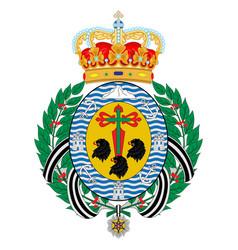 Coat arms santa cruz de tenerife canary vector