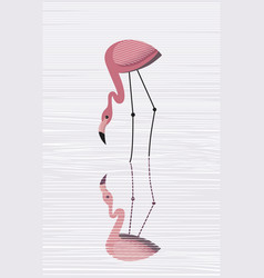 flamingos are reflected in water vector image