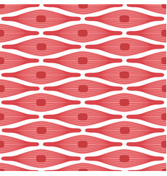 Muscle tissue seamless pattern vector