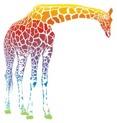 Rainbow giraffe vector