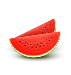 watermelon realistic sliced fruit vector image