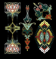 Color On Black Ornaments vector image